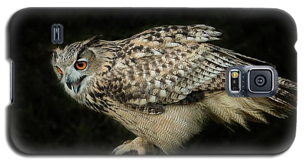 Eagle-owl Galaxy S5 Case by CR Courson