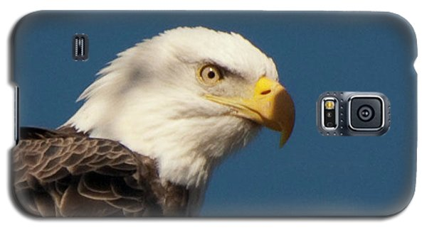 Galaxy S5 Case featuring the photograph Eagle by Rod Wiens