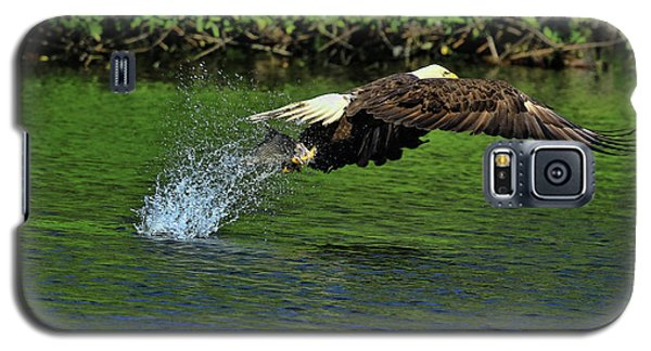 Galaxy S5 Case featuring the photograph Eagle Series Fish Catch by Deborah Benoit