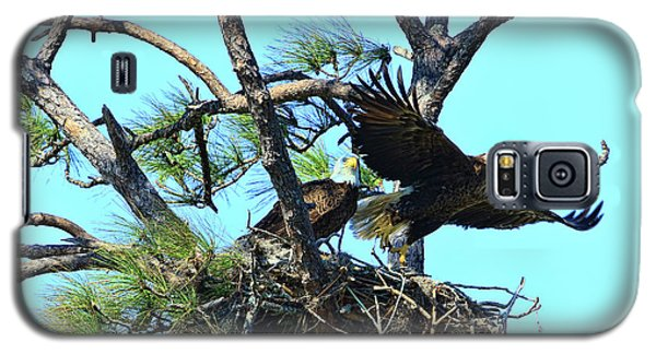 Galaxy S5 Case featuring the photograph Eagle Series The Nest by Deborah Benoit