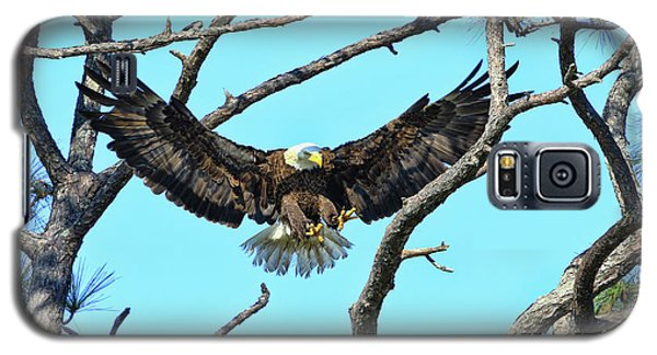 Galaxy S5 Case featuring the photograph Eagle Series Wings by Deborah Benoit