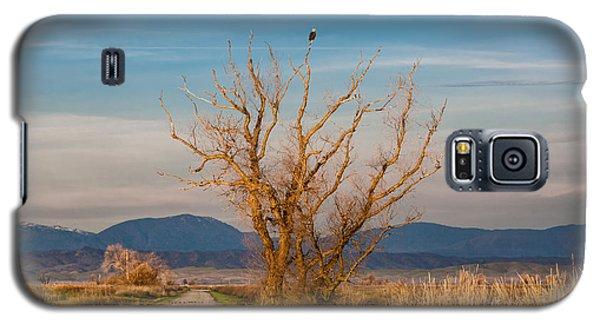 Eagle Watch Galaxy S5 Case
