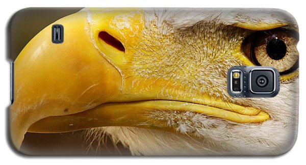 Eagles Eyes Galaxy S5 Case
