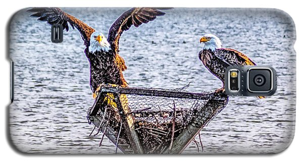 Galaxy S5 Case featuring the photograph Eagles In Blackwater Refuge by Nick Zelinsky