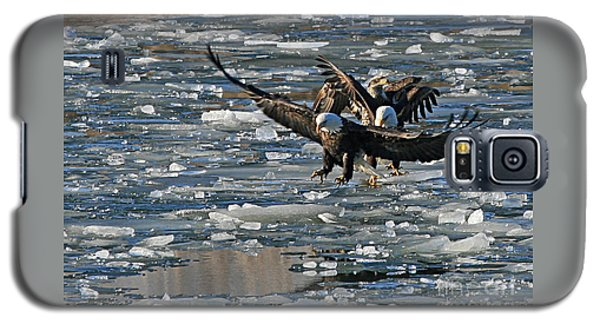 Eagles On Ice Galaxy S5 Case