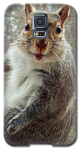 Earl The Squirrel Galaxy S5 Case