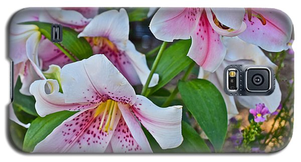 Early August Tumble Of Lilies Galaxy S5 Case