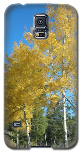 Early Autumn Aspens Galaxy S5 Case