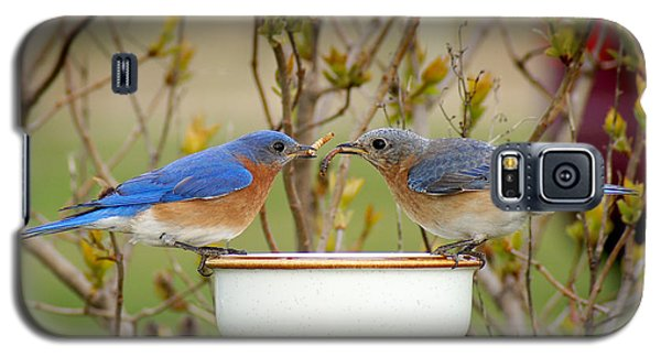 Early Bird Breakfast For Two Galaxy S5 Case