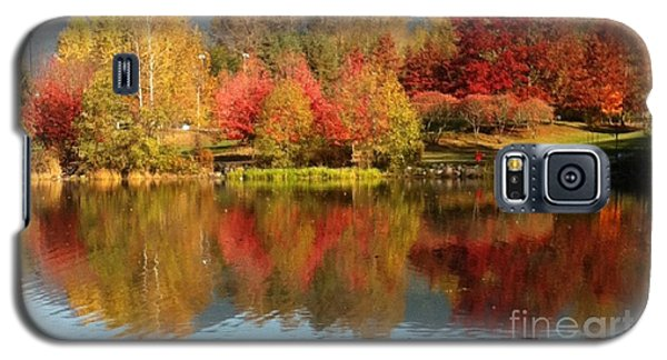 Galaxy S5 Case featuring the painting Early Fall At Lafarge Lake by Rod Jellison