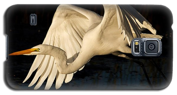 Early Light Egret Galaxy S5 Case