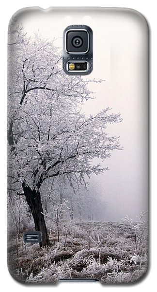 Early Morning Frost  Galaxy S5 Case