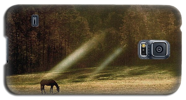 Galaxy S5 Case featuring the photograph Early Morning Grazing by Diane Merkle
