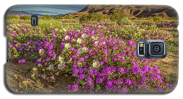Galaxy S5 Case featuring the photograph Early Morning Light Super Bloom by Peter Tellone