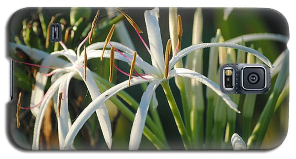 Early Morning Lily Galaxy S5 Case by LeeAnn Kendall