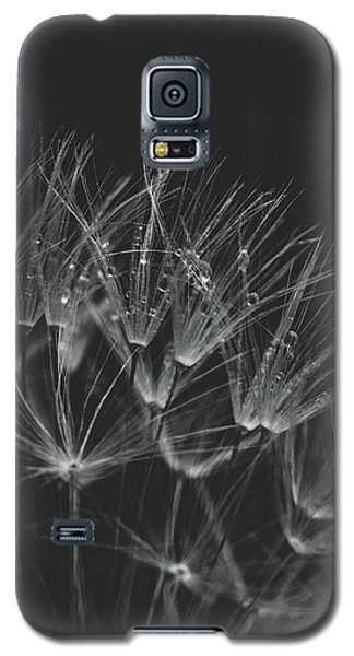 Early Morning Rituals Galaxy S5 Case by Yvette Van Teeffelen