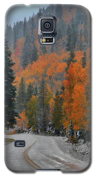 Early Snow Galaxy S5 Case
