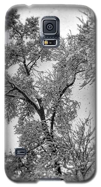 Galaxy S5 Case featuring the photograph Early Snow by Steven Huszar
