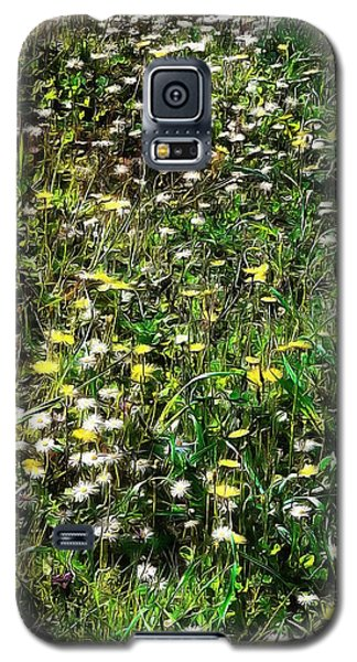 Early Spring Beauty In Umbria Galaxy S5 Case