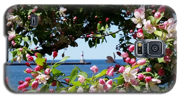 Galaxy S5 Case featuring the photograph Early Spring Blossoms At The Waterfront by Wendy Shoults