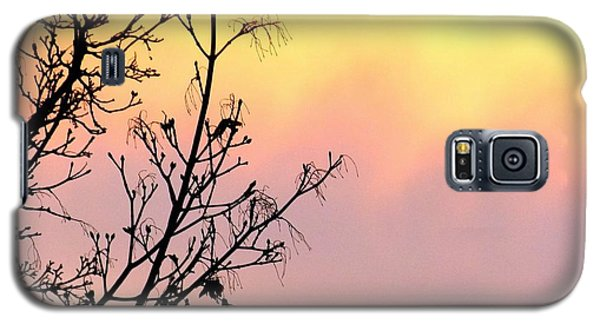 Galaxy S5 Case featuring the photograph Early Spring Sunset by Will Borden