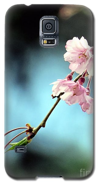 Galaxy S5 Case featuring the photograph Early Spring Weeping Cherry  by Janice Drew