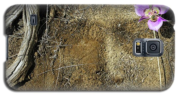Galaxy S5 Case featuring the photograph Earth Memories-desert Flower # 1 by Ed Hall