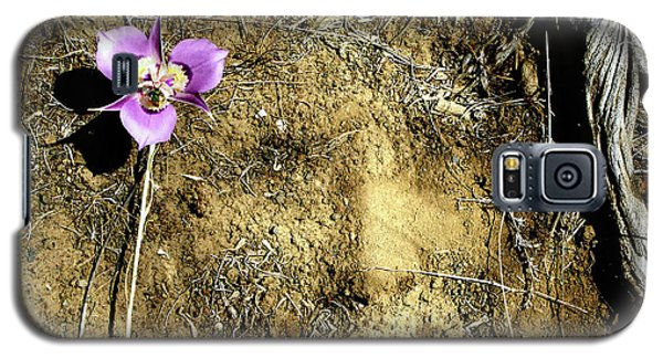 Galaxy S5 Case featuring the photograph Earth Memories - Desert Flower # 2 by Ed Hall