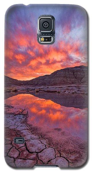 Earth Scales Galaxy S5 Case