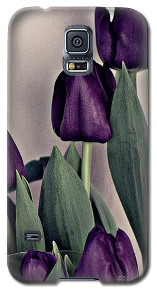 A Display Of Tulips Galaxy S5 Case by Sherry Hallemeier