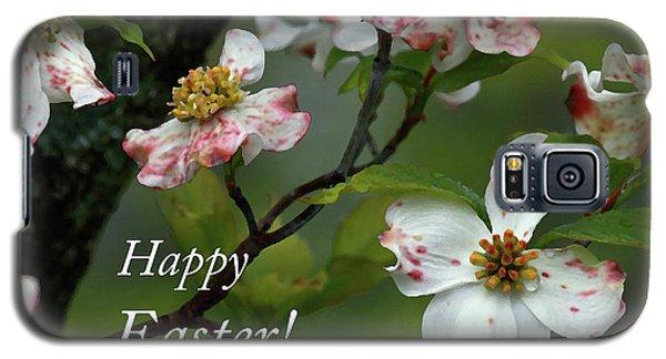 Easter Dogwood Galaxy S5 Case by Douglas Stucky