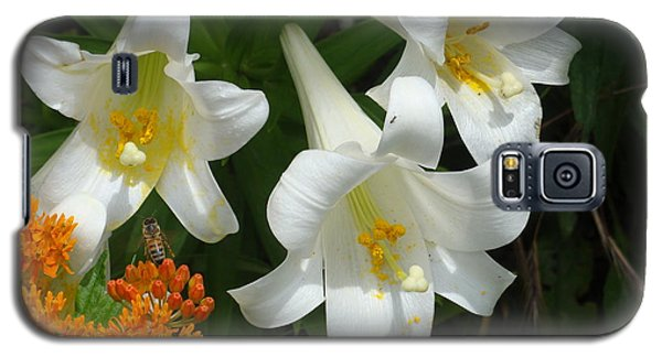 Easter Lilies And Butterfly Weed Galaxy S5 Case