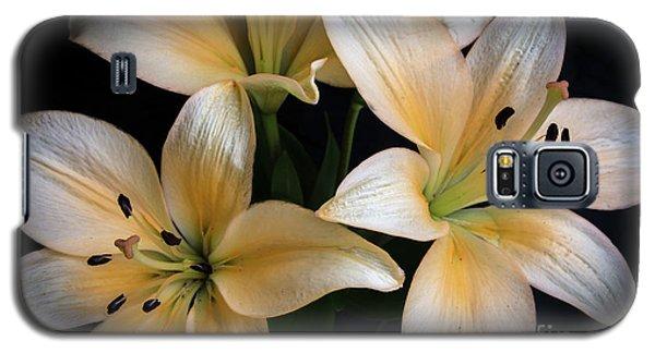 Easter Lilies  Galaxy S5 Case by Deborah Klubertanz