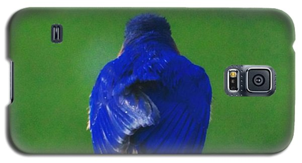 Eastern Bluebird. #birds #birding Galaxy S5 Case by Heidi Hermes