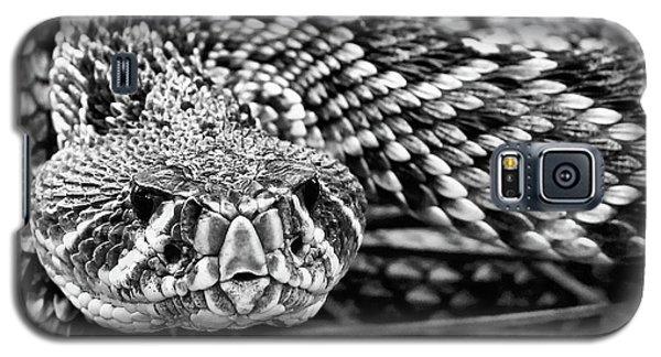 Eastern Diamondback Rattlesnake Black And White Galaxy S5 Case