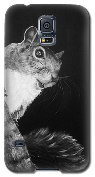 Eastern Gray Squirrel Galaxy S5 Case