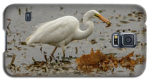 Eastern Great Egret 10 Galaxy S5 Case