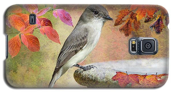 Galaxy S5 Case featuring the photograph Eastern Phoebe In Autumn by Bonnie Barry