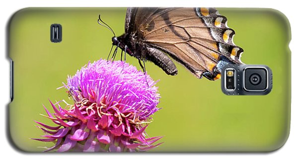 Galaxy S5 Case featuring the photograph Eastern Tiger Swallowtail Dark Form  by Ricky L Jones