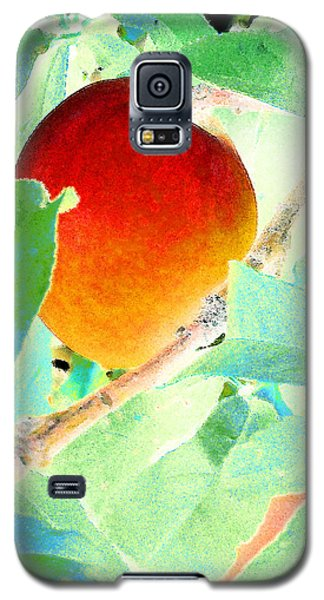 Eat A Peach Galaxy S5 Case by Louis Nugent