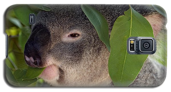 Koala Galaxy S5 Case - Eat Your Greens by Mike  Dawson
