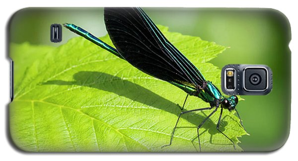 Galaxy S5 Case featuring the photograph Ebony Jewelwing by Ricky L Jones