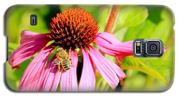 Echinacea Bee Galaxy S5 Case
