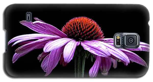 Echinacea Galaxy S5 Case by Sheldon Bilsker