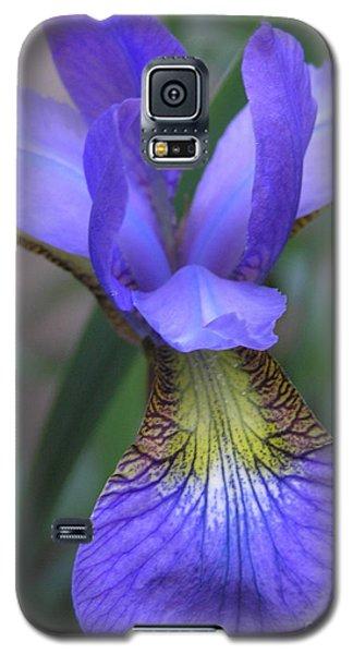 Ec Iris Galaxy S5 Case
