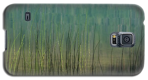Edge Of The Lake - 365-262 Galaxy S5 Case by Inge Riis McDonald