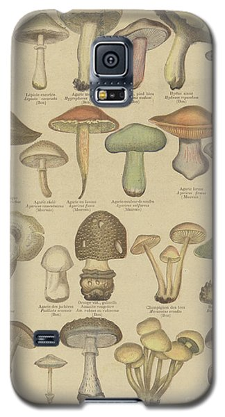 Edible And Poisonous Mushrooms Galaxy S5 Case by French School