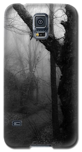 Eerie Stillness Galaxy S5 Case