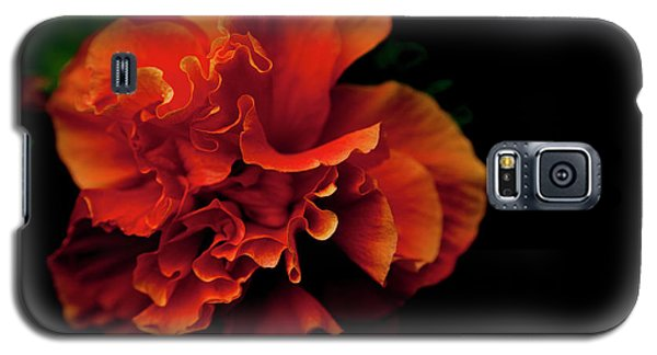 Efflorescence Galaxy S5 Case