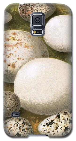 Eggs Galaxy S5 Case